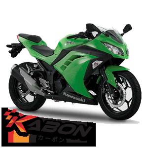 Ninja 300 / 250Fi